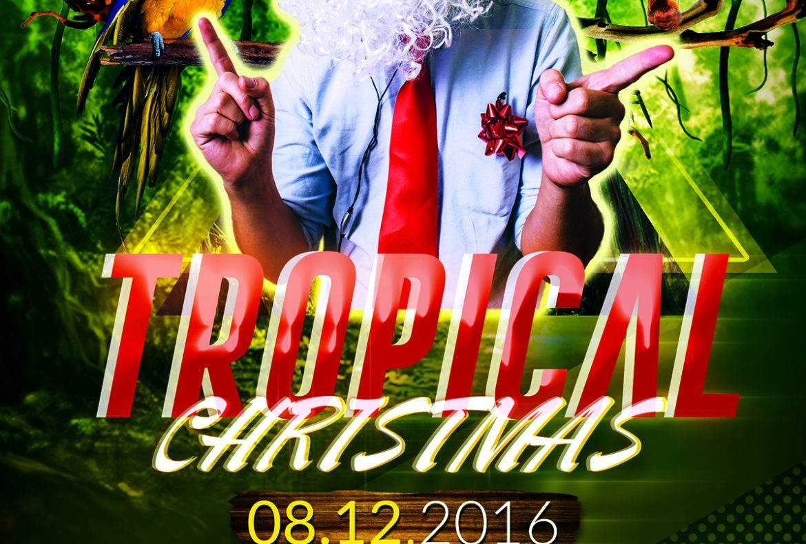 Tropical Christmas Party Plakat
